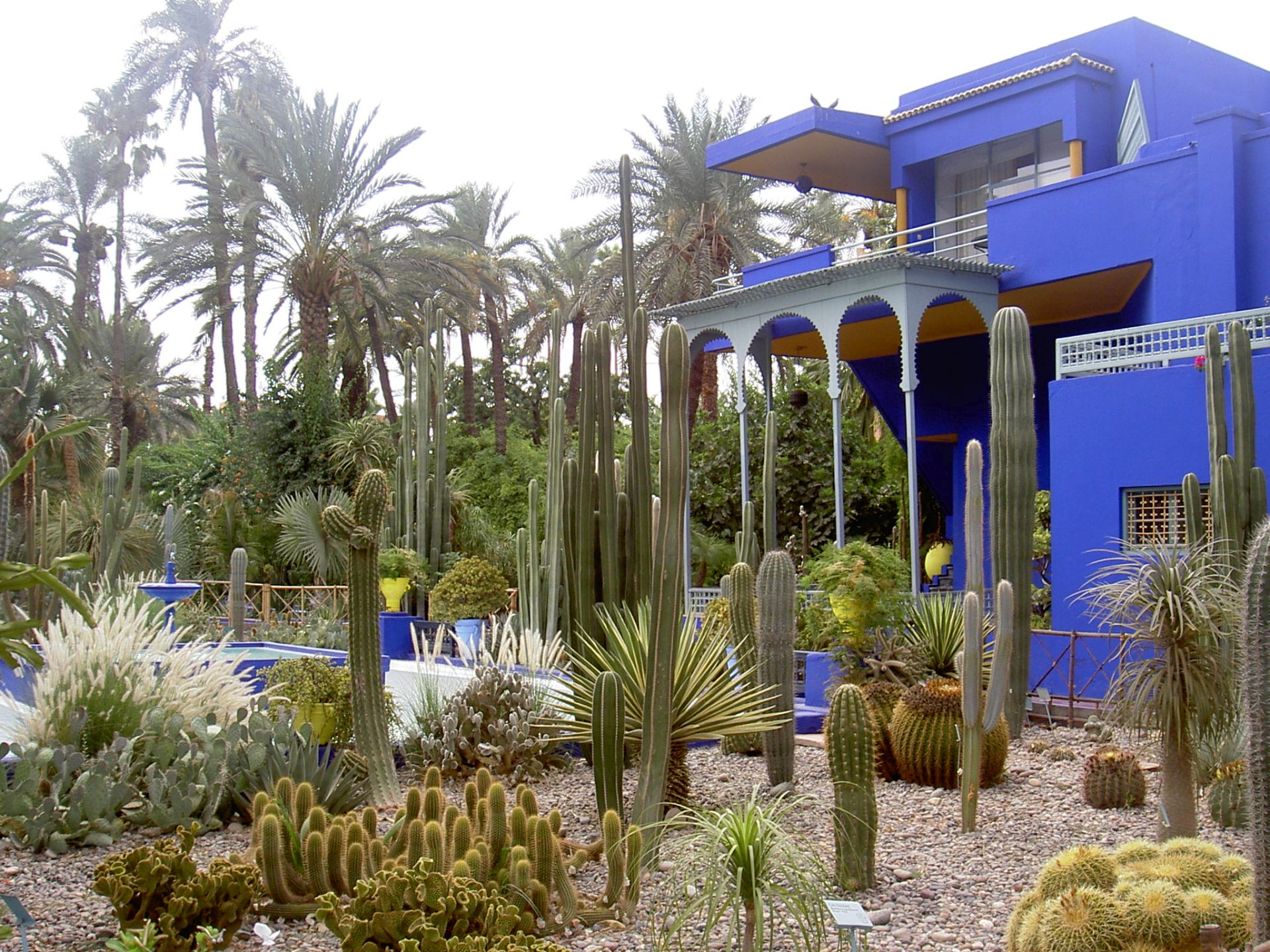 Garden made up of various types of cactus around a marble house. One of the most beautiful gardens
