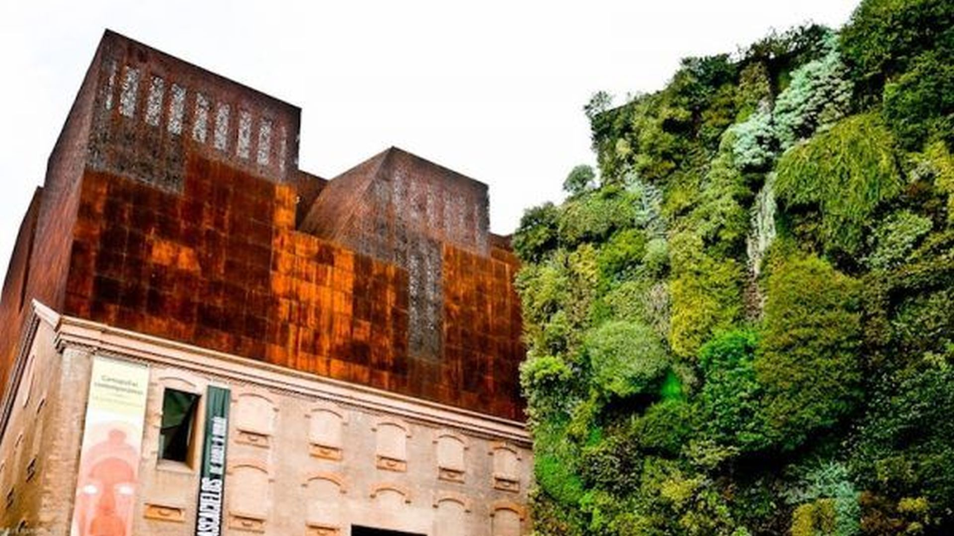 wall full of different meadows and one of the coolest Vertical gardens